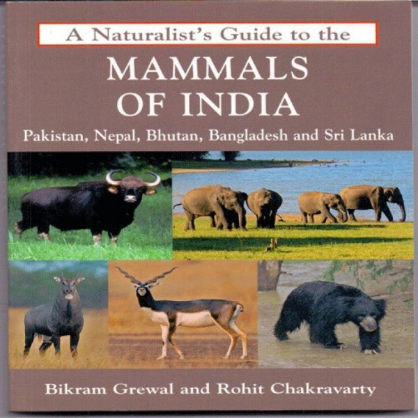 A Naturalist's Guide to the Mammals of India  (English, Paperback, Bikram Grewal, Rohit Chakravarty)