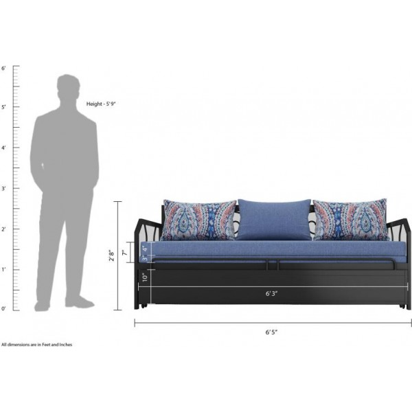 FurnitureKraft Caen Double Metal, Engineered Wood Sofa Bed  (Finish Color - Blue Mechanism Type - Pull Out)